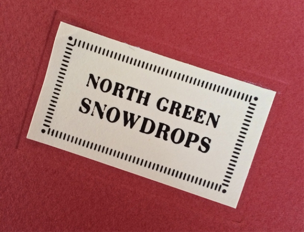 Cover of the 1999 edition of the North Green Snowdrops catalogue