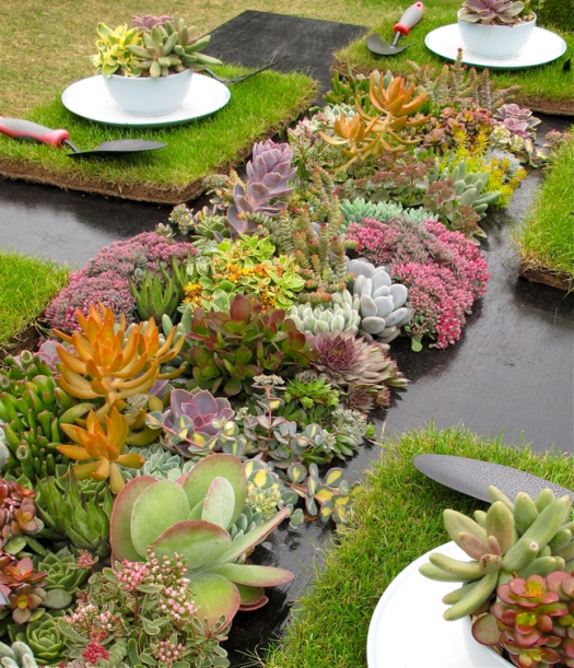 Table setting with succulents at the Southport Flower Show
