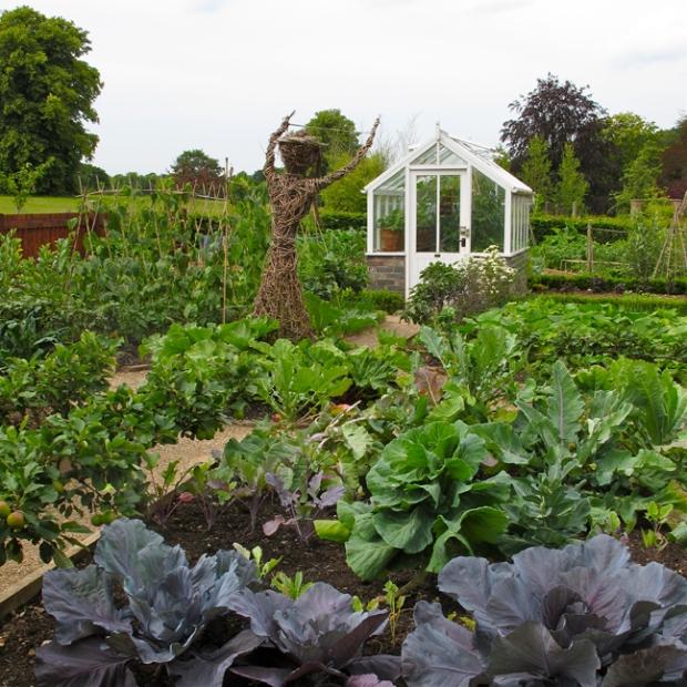 Potager at Trentham Gardens