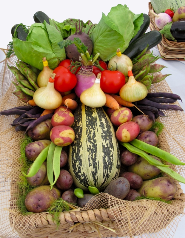 Prize winning basket of vegetables