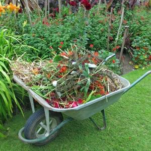 Hidcote wheelbarrow