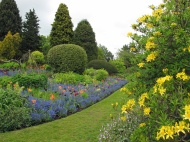 Border-at-Dorothy-Clive-Gardens