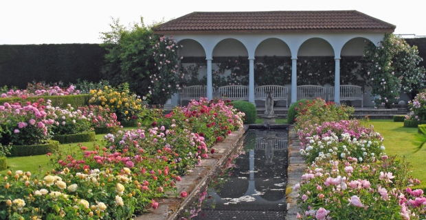 Canal-garden-in-bloom