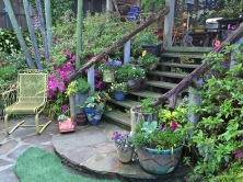 Garden steps with pots and cedar rails