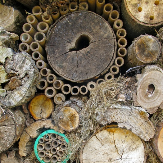 Insect hotel (detail)
