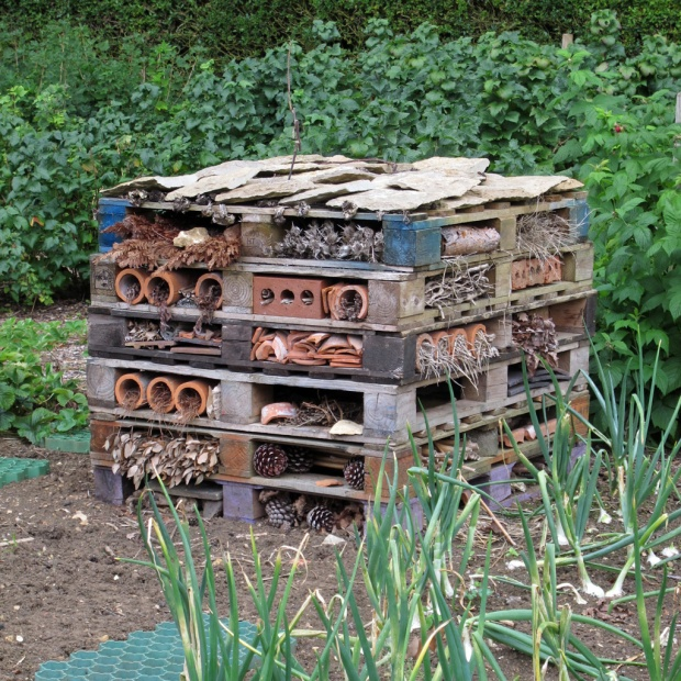 Insect hotel at Hidcote