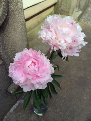 Peonies on a doorstep