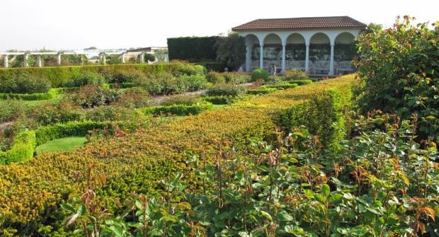 Rose-garden-out-of-season