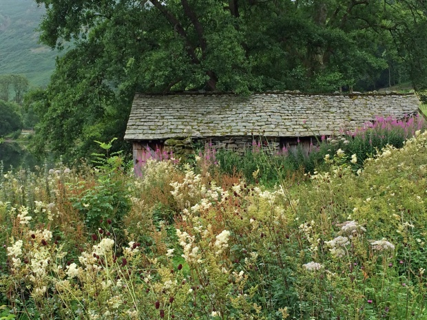Grasmere cabin with wildflowers