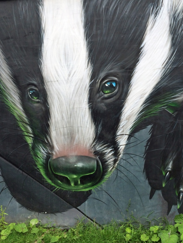 Glasgow street art: Badger