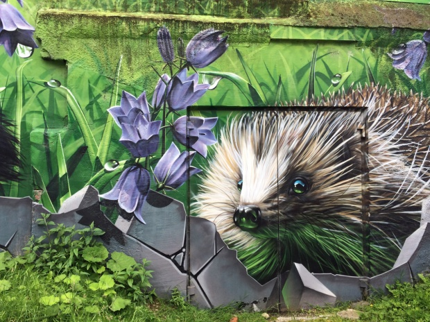 Glasgow street art: Hedgehog and harebell