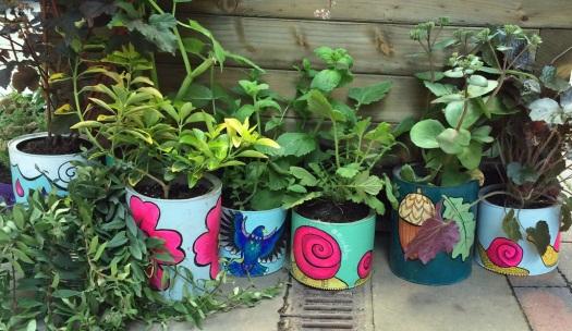 Colourful plant pots