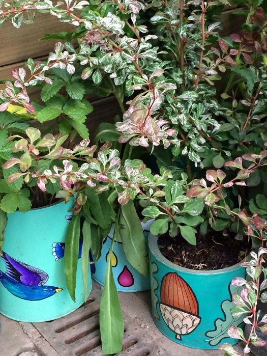 Bird and acorn plant pots