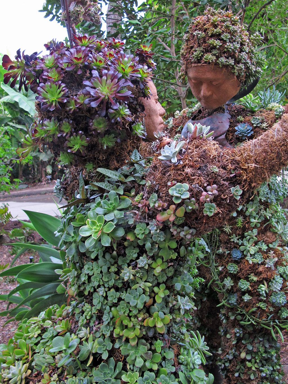 Succulent Topiary Dancers Susan Rushton