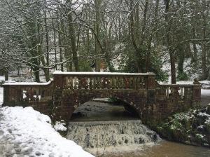 Sunnyhurst Wood bridge with waterfall