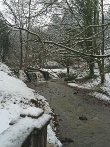 Sunnyhurst Wood waterfall