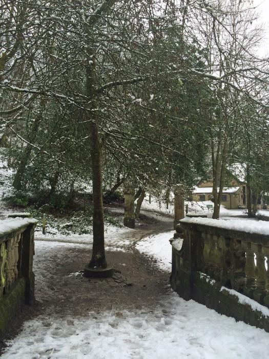 Footpath through Sunnyhurst Wood