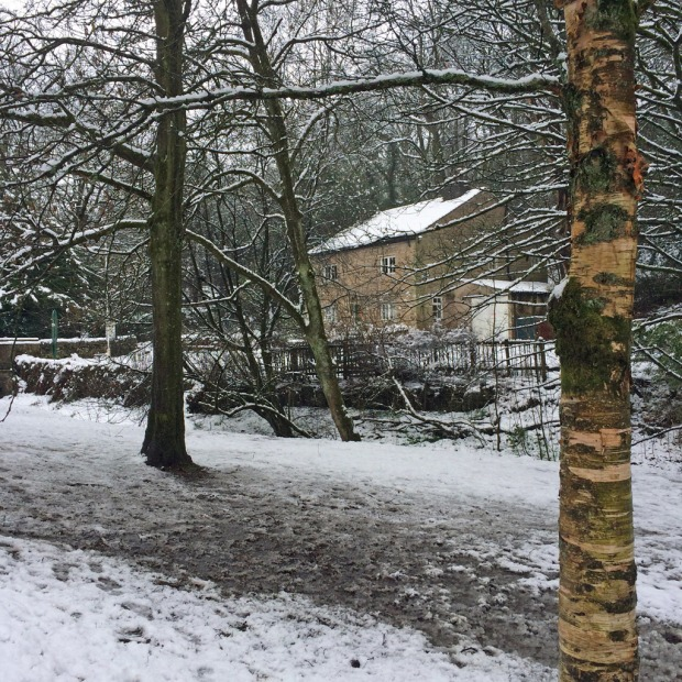 Sunnyhurst Wood Visitor Centre in snow