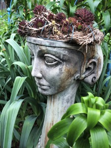 Lady with succulents