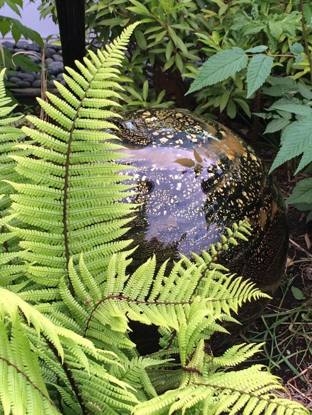 Glass orb with fern