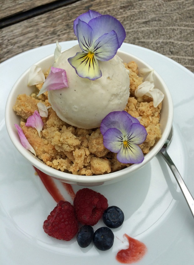 Rhubarb Crumble with Ice Cream