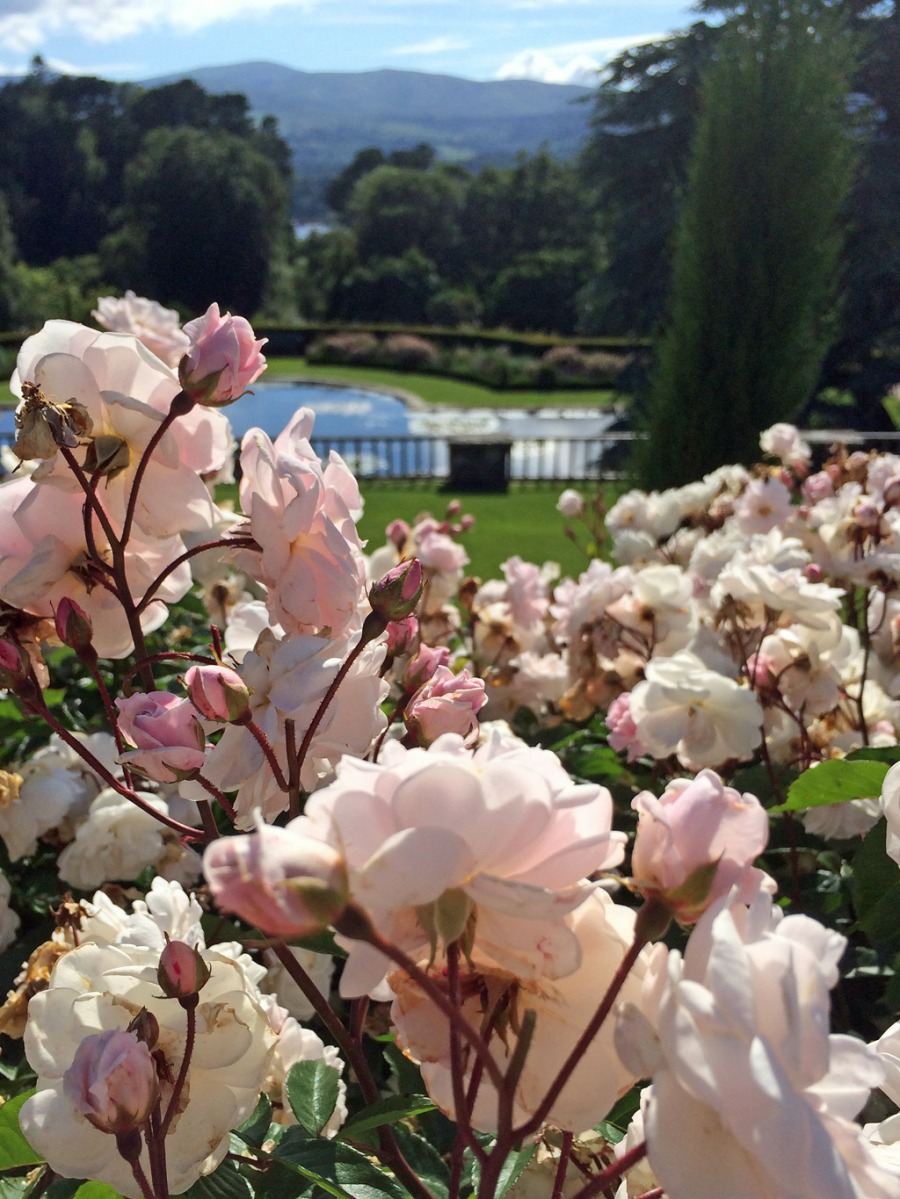 View from the terrace at Bodnant Gardens
