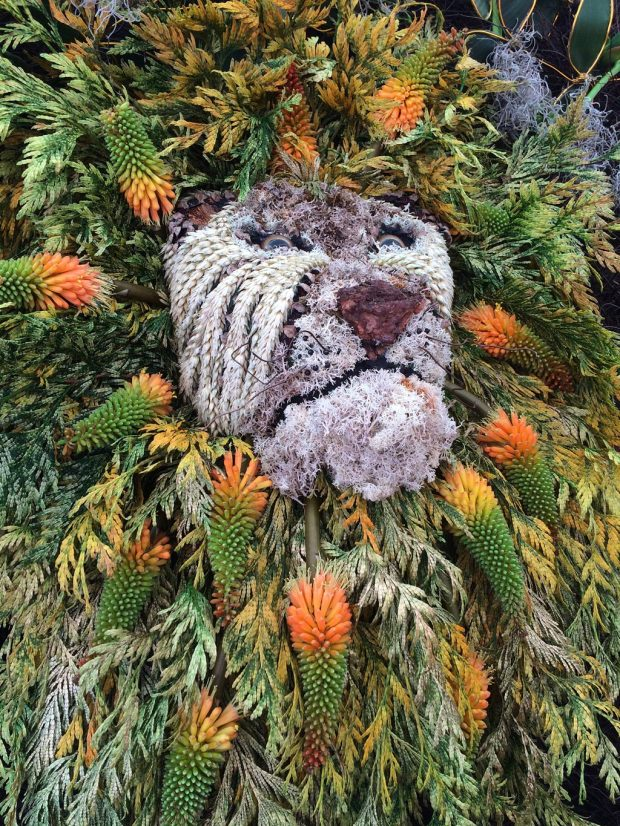 Lion made from flowers, ferns and grasses