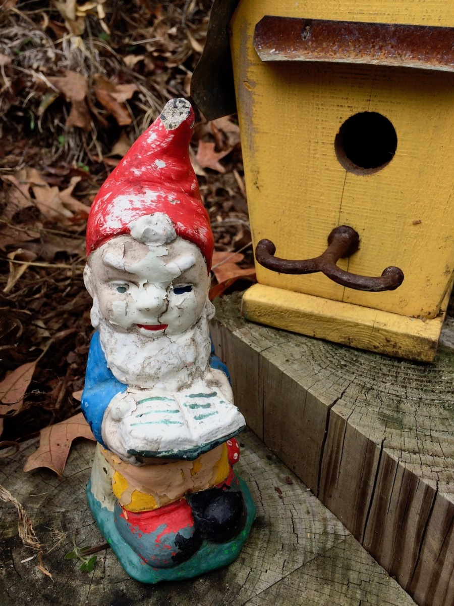 Gnome waiting to be rehomed