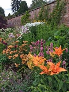 Holehird Walled Garden Border
