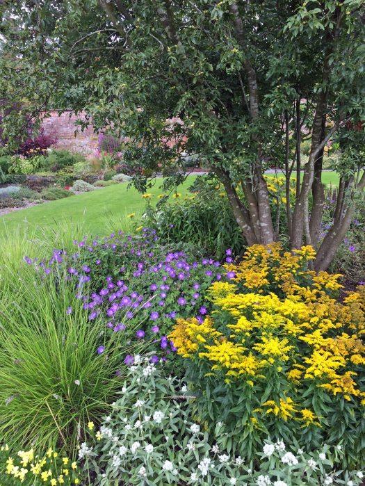 Holehird: Inside the Walled Garden