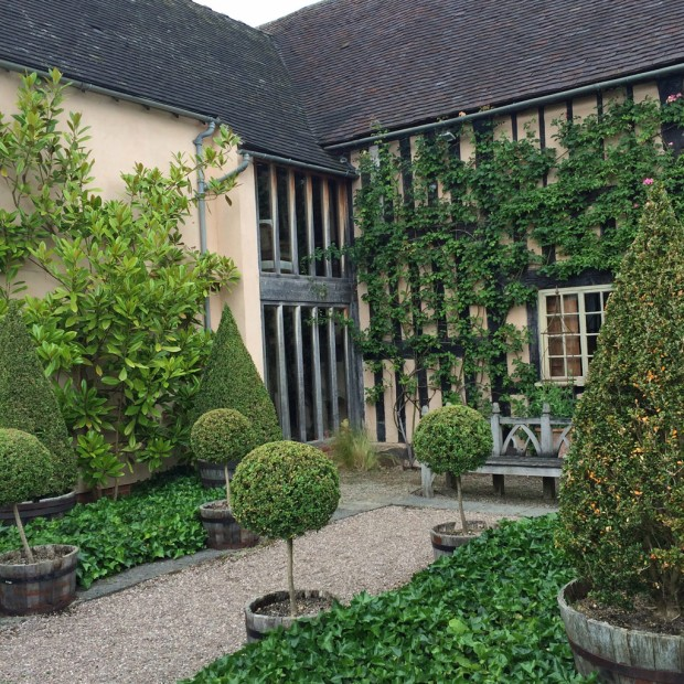 Topiary at Wollerton Old Hall