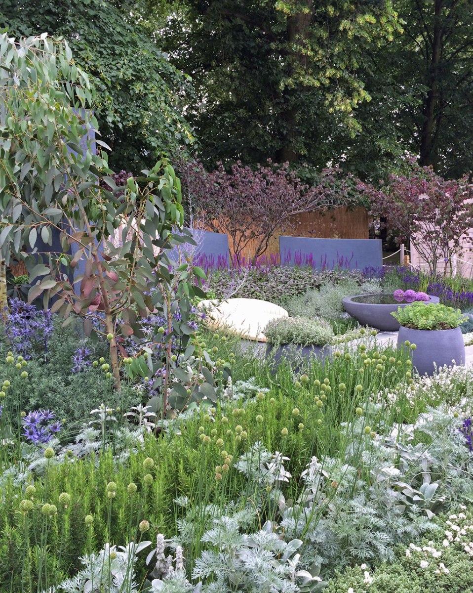 Healing Urban Garden, Hampton Court