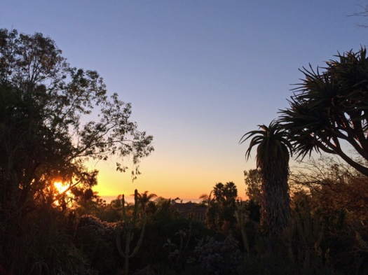 Sunset at San Diego Botanic Garden