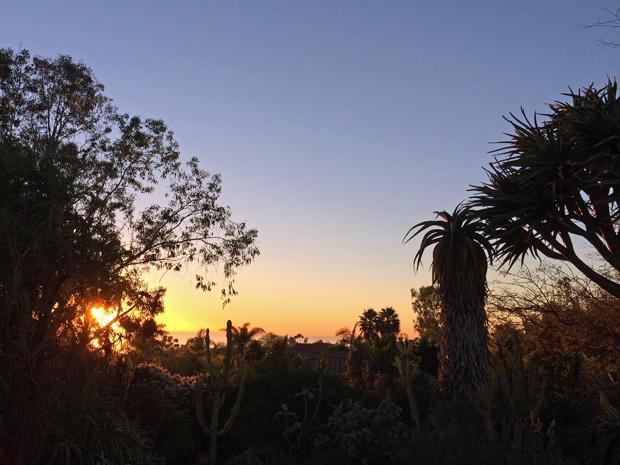 Sunset at San Diego Botanic Garden