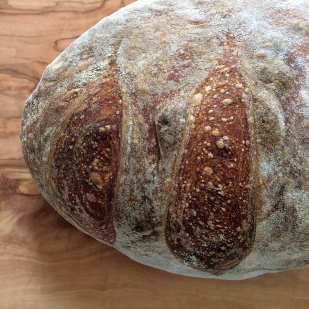 Home made sourdough bread