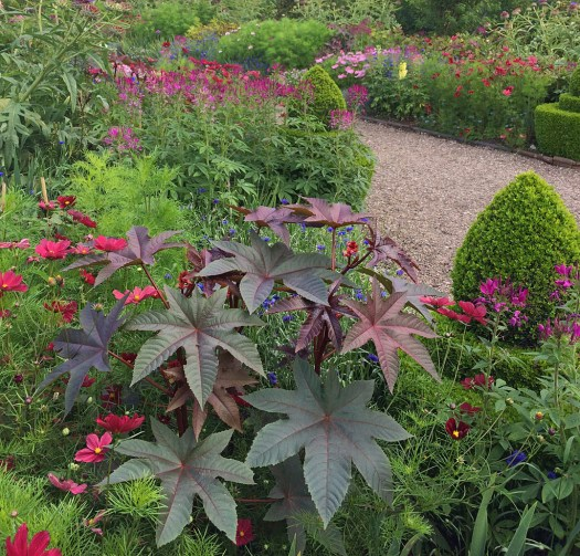 Arley Hall in July