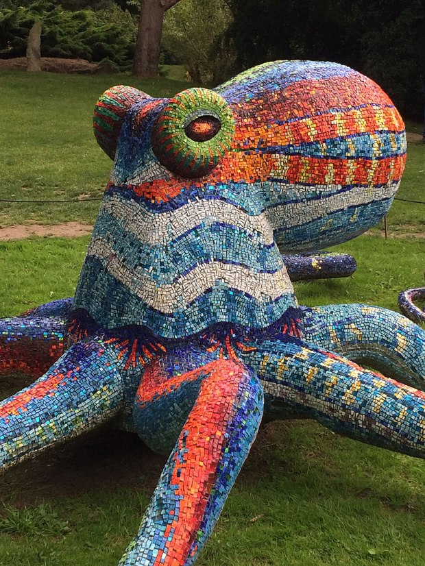 Colourful Mosaic Octopus