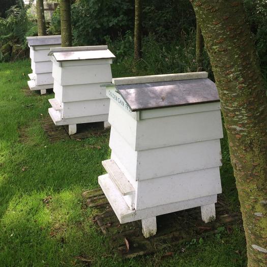 Ian Hamilton Finlay Beehives