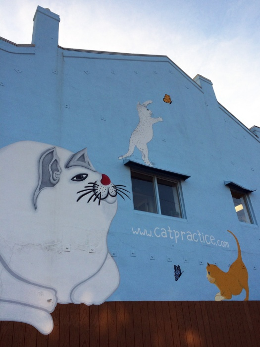 Wall decorated with cats