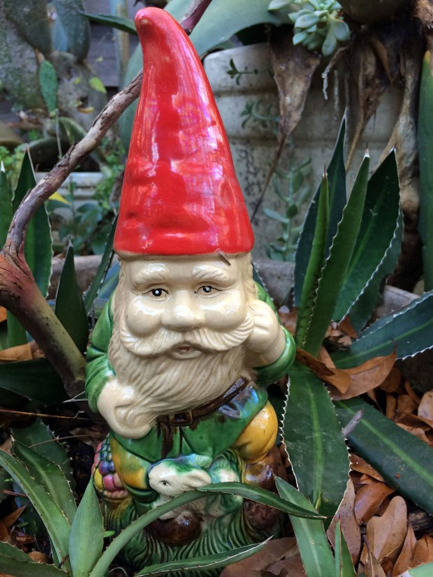 Gnome without snow