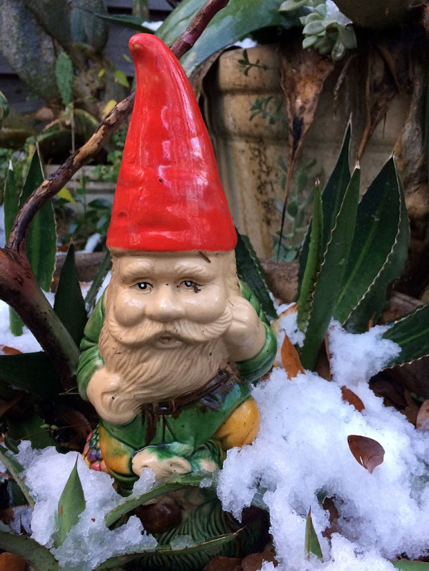 Gnome with snow almost to the knee