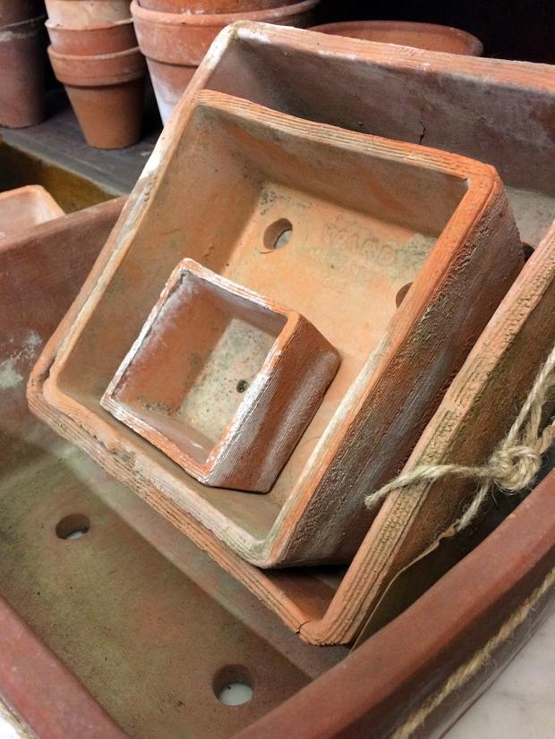 Square terracotta plant pots of various sizes