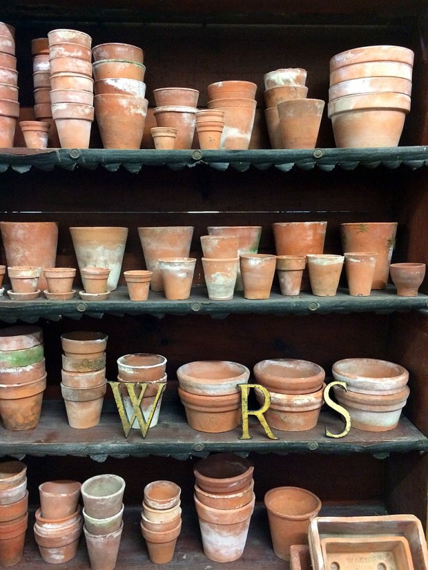 An assortment of recycled plant pots