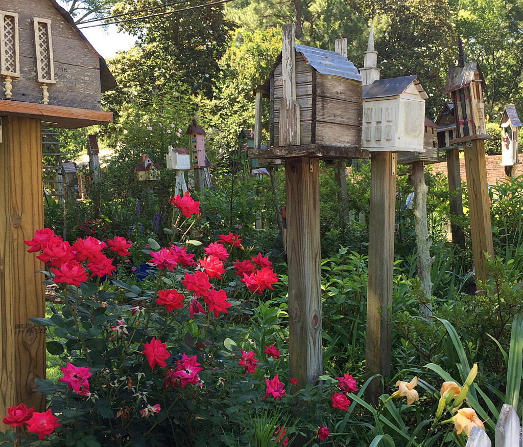 Red Roses With An Assortment Of Birdhouses