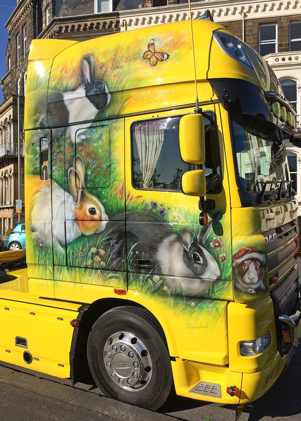 Yellow HGV with rabbit and butterfly design