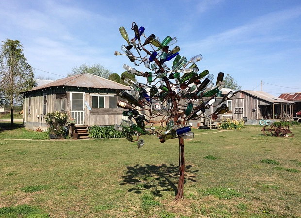 Bottle tree with colourful bottles with shacks