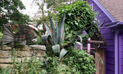 Fish and a cactus at the entrance to a purple house