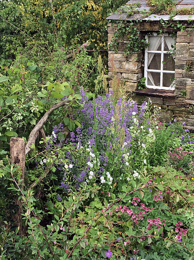 Curved wooden fence edges a cottage garden