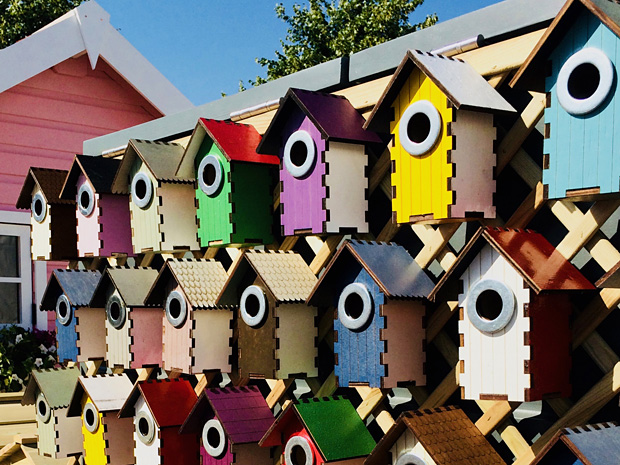 Rows of colourful bird houses