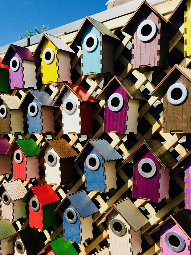 Display of bird houses stained in bright colours